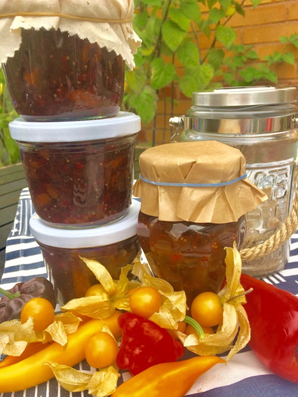 Read more about the article Physalischutney