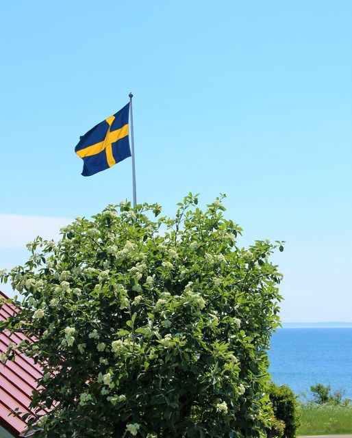 Read more about the article Glad Midsommar!!!